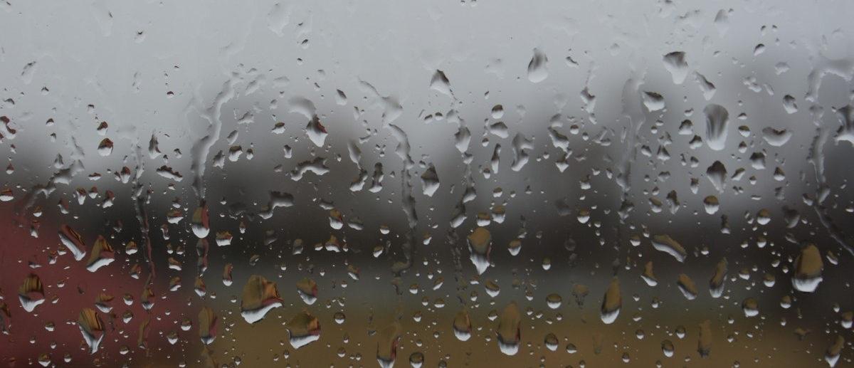 погода зуя