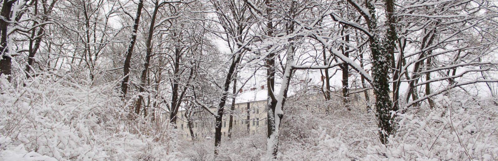 зима в крыму зуя