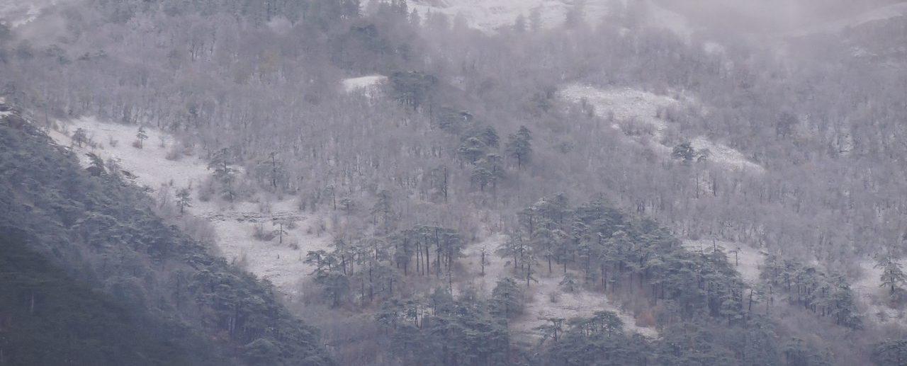 снег в Крымских горах фото