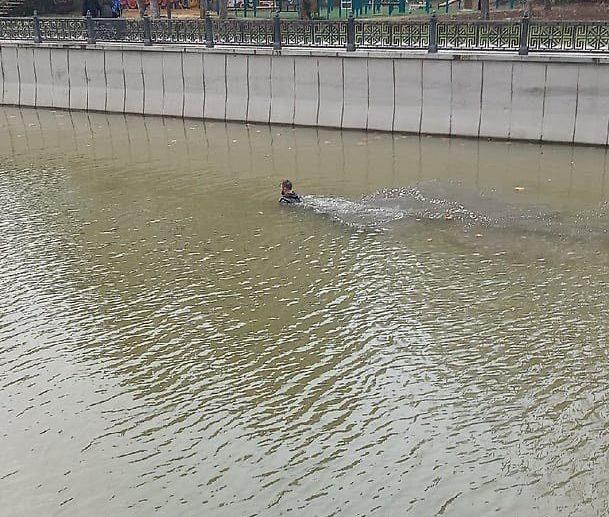 Мужчина плавал в реке салгир в Симферополе