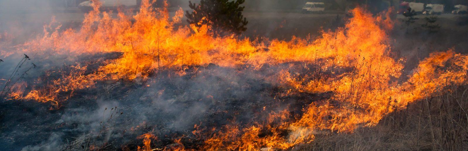 Пожары в Крыму фото