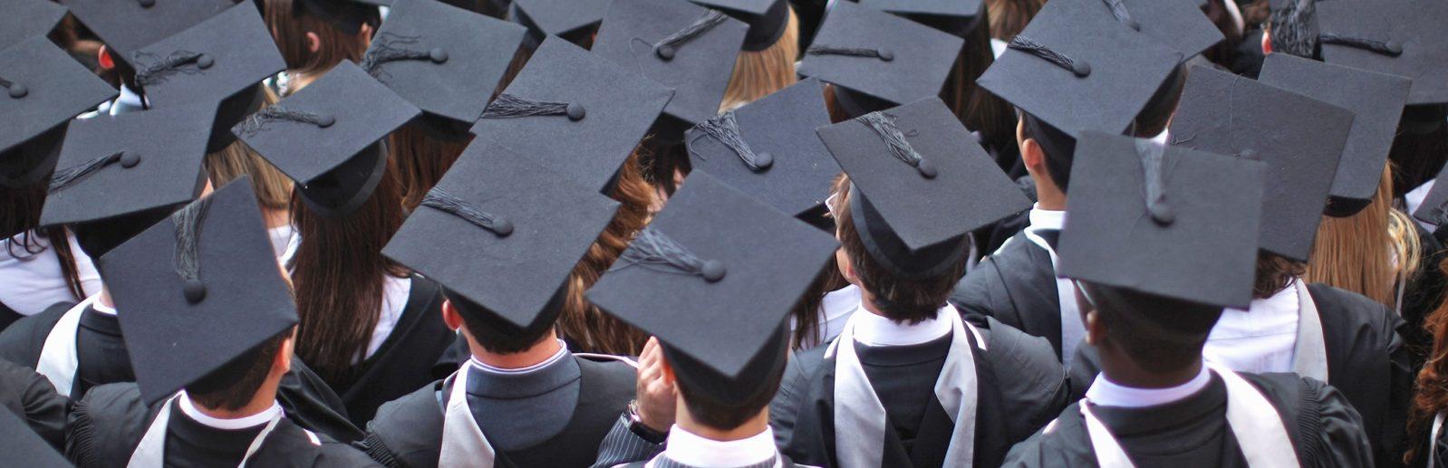 Высшее образование коронавирус каникулы